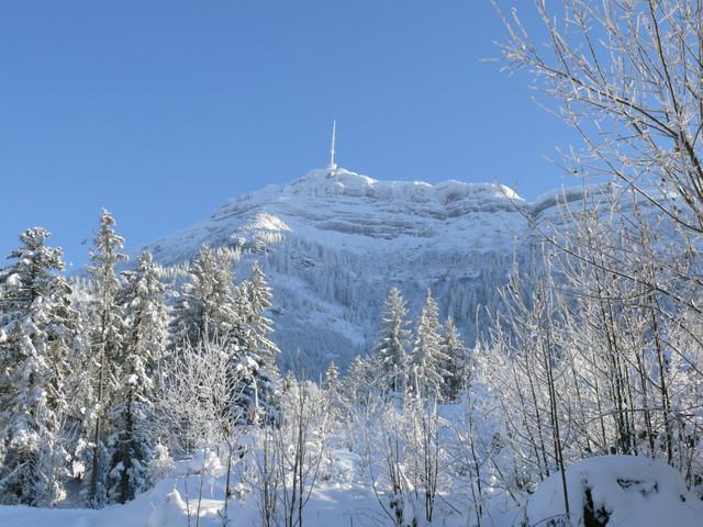 Rigi Kulm Winter