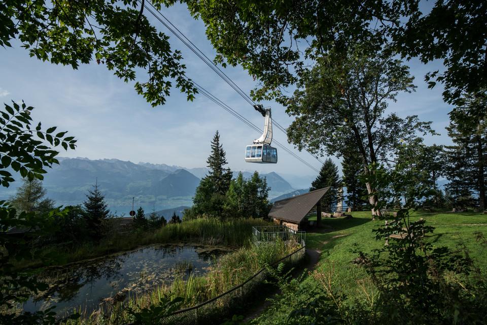 Luftseilbahn Weggis-Rigi Kaltbad im Sommer