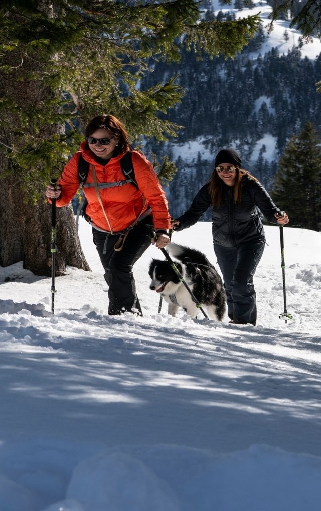 Winterwandern auf der Rigi (Hero Bild)