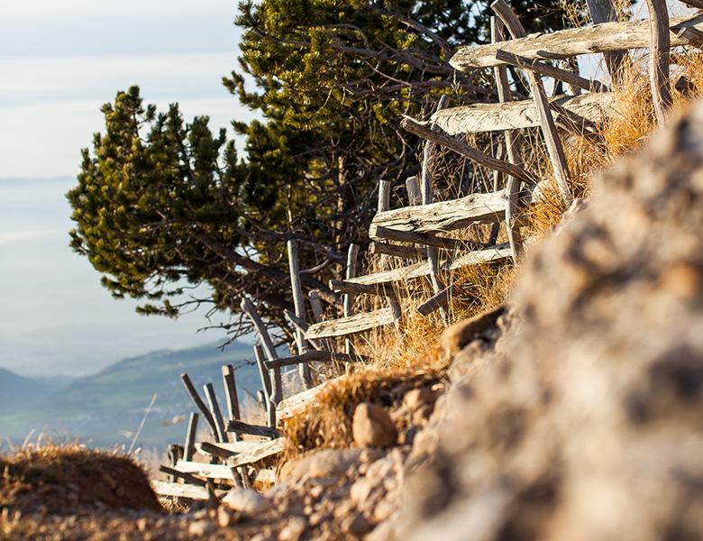 Aussicht von der Rigi mit Zaun