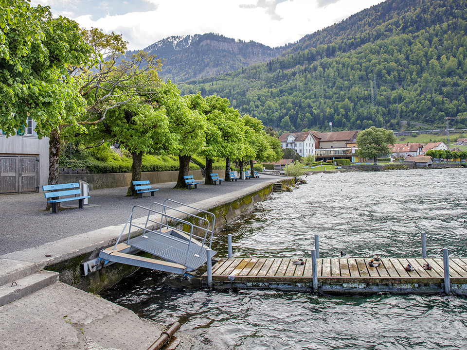 Seepromenade Arth