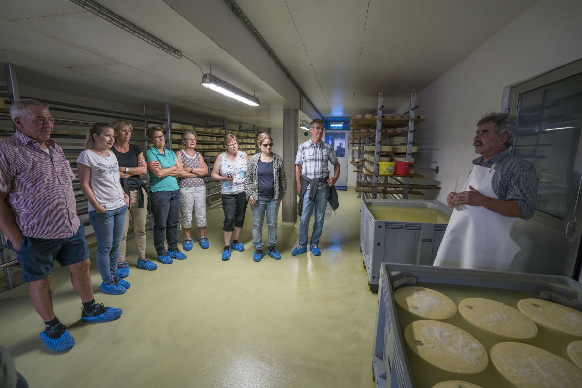 Gruppe in der Käserei