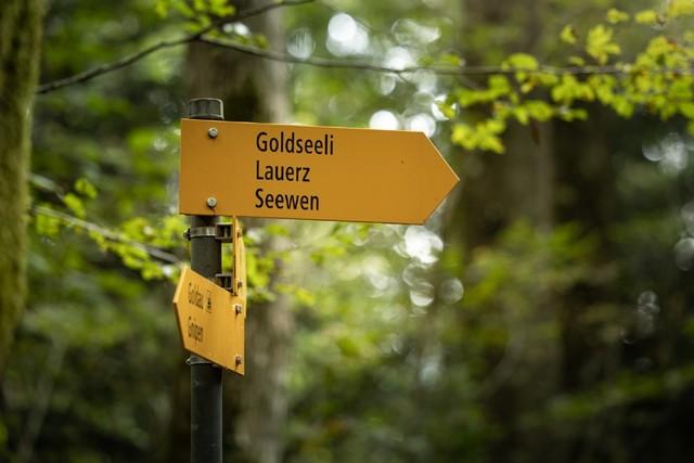 Wegweiser Richtung Goldseeli