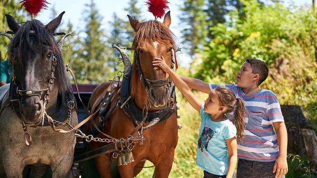 Kinder mit Pferdekutsche