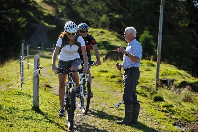 Verhalten im Alpgebiet