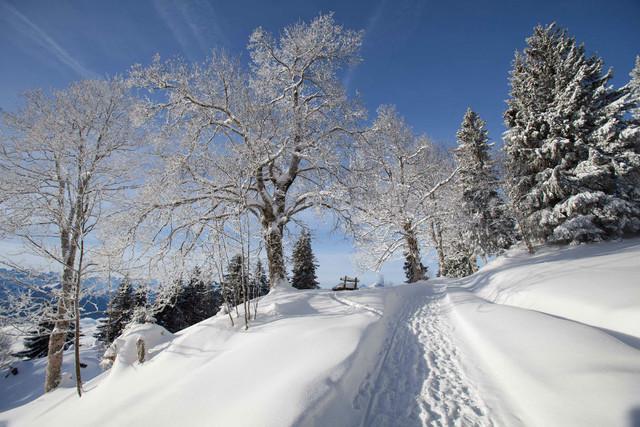 Winterwanderweg Känzei