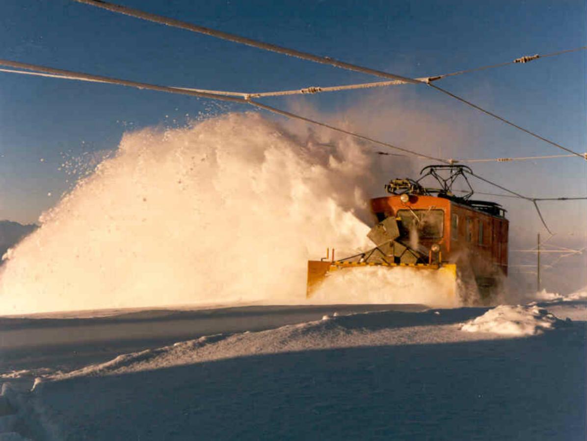Schneeschleuder Nr. 8