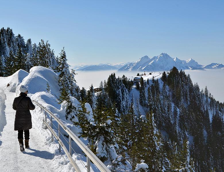 Winterwandern auf der Rigi