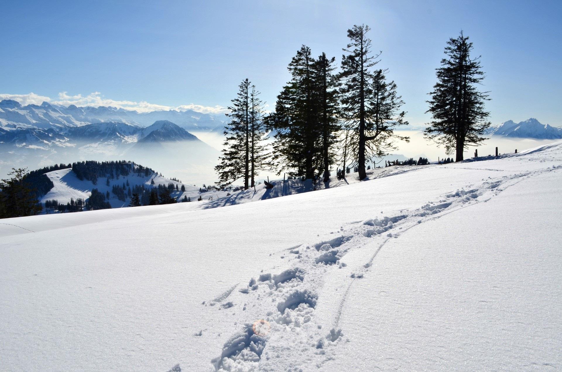 Schneeschuhspuren auf der Rigi