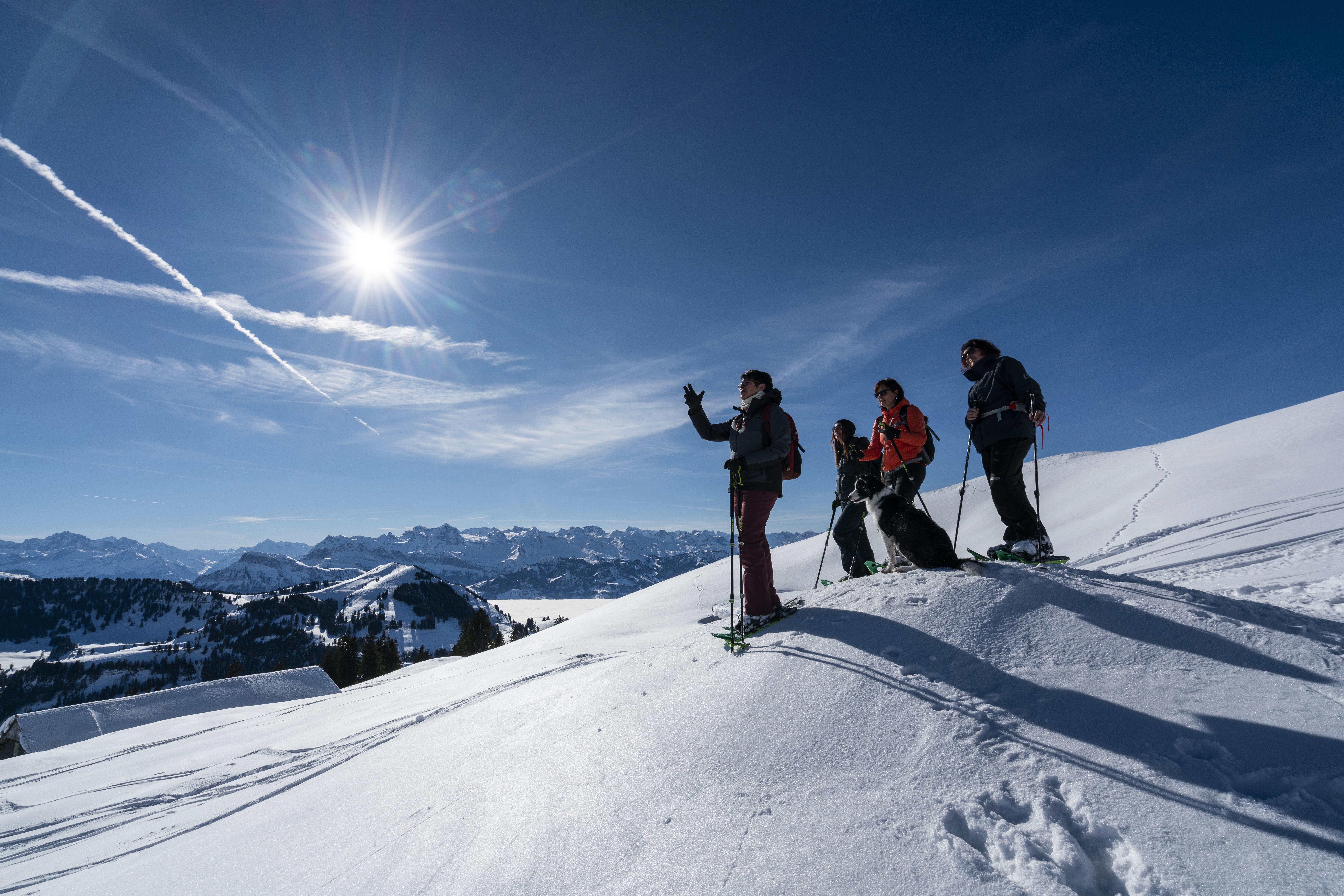 Schneeschuh-Tour auf der Rigi